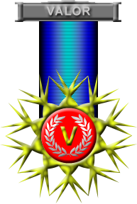 Commandants Crest of Valor