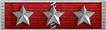 Lifetime Service Ribbon 15 Years