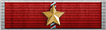Lifetime Service Ribbon 20 Years