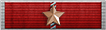 Lifetime Service Ribbon 2 years