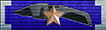 Combat Service Ribbon (2 Awards)