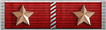 Lifetime Service Ribbon 3 Years